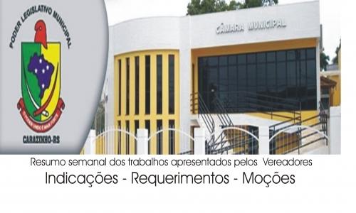 RESUMO - SESSÃO ORDINÁRIA - 08.09.2010