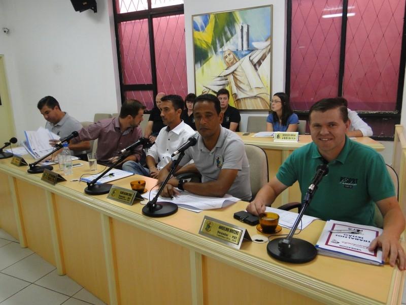 Sessão define reabertura de CPI sobre corte de árvores