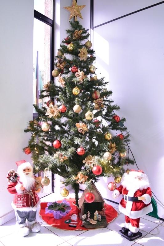 Câmara inicia preparativos para o Natal