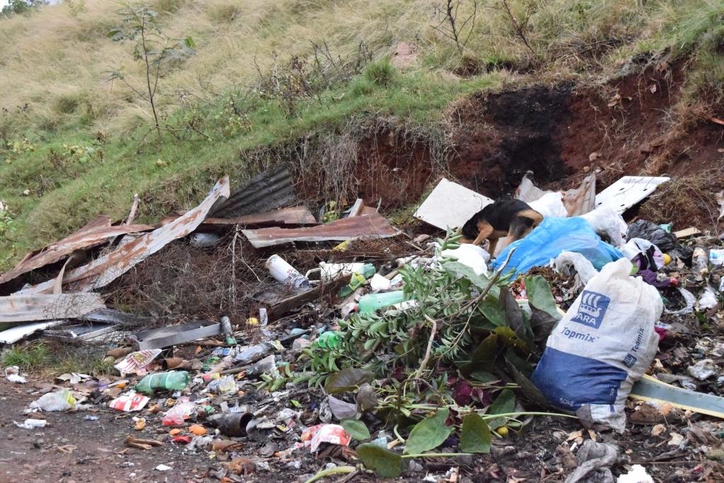Moradores reclamam de lixo em via pública