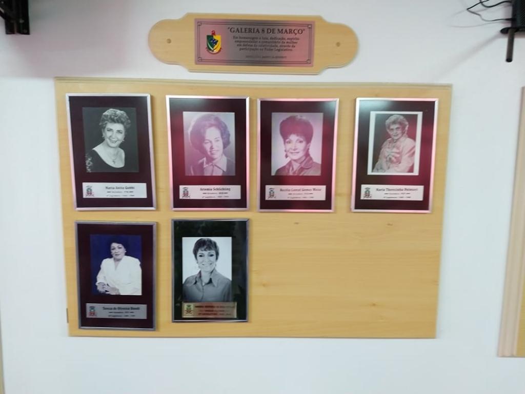 Sete mulheres eleitas em toda a história do Poder Legislativo de Carazinho